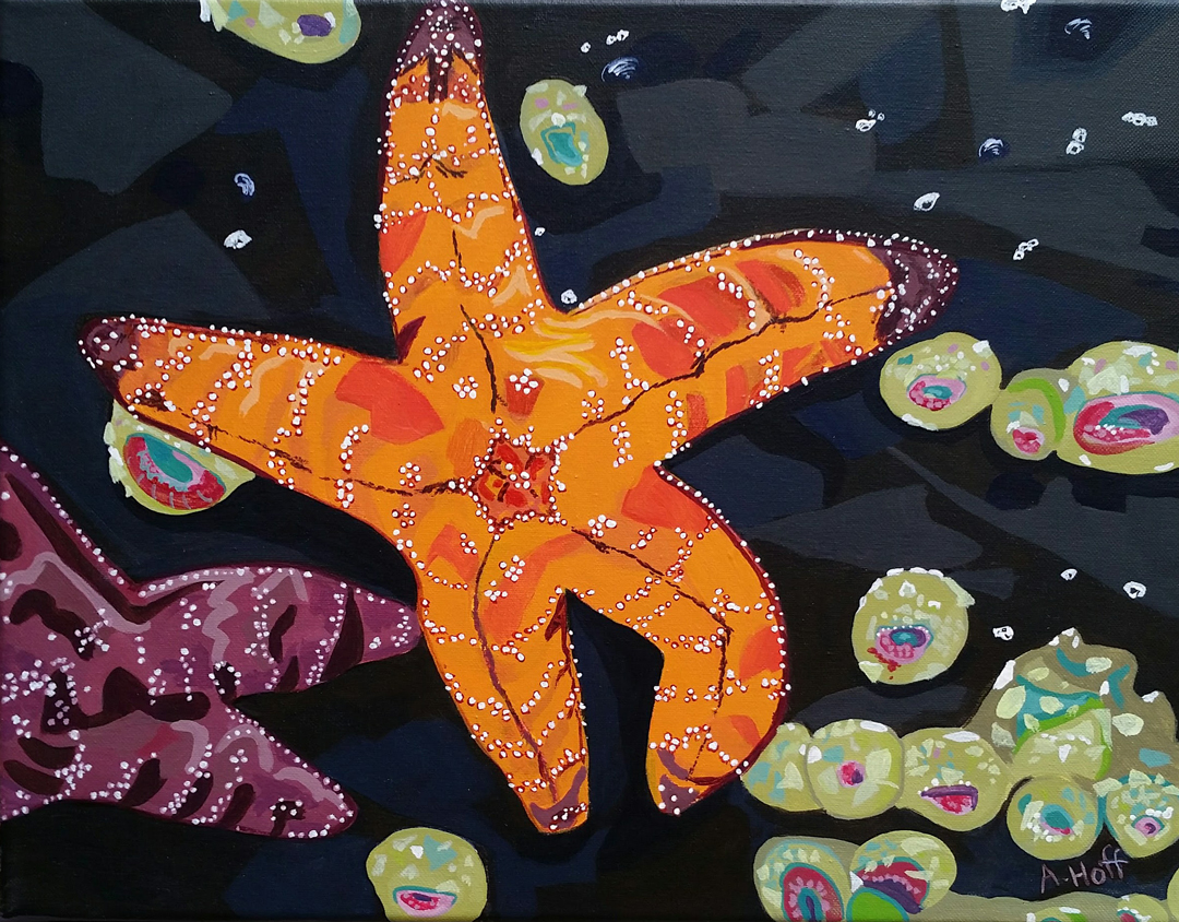 Low Tide Stars by artist April Hoff